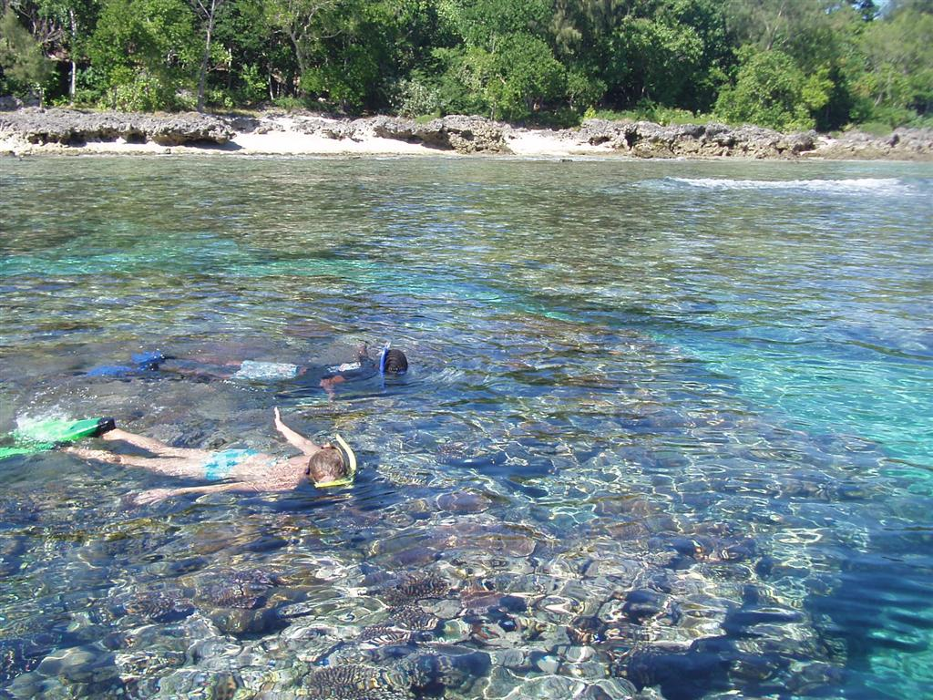 Pango Snorkeling